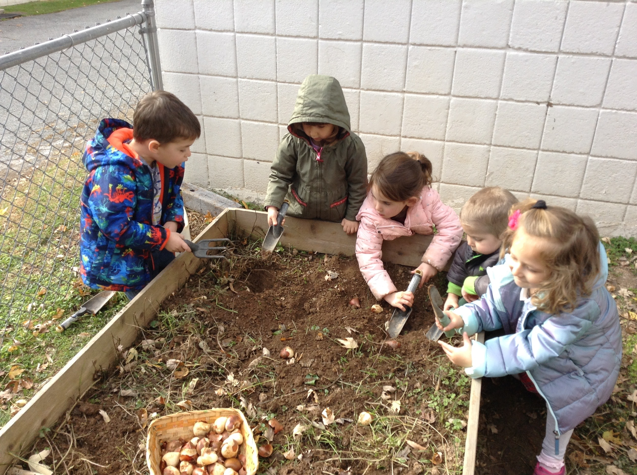 Planting bulbs. (Threes)